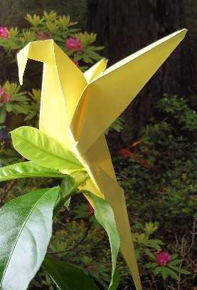 Оригами Зоопарк.  Главная.